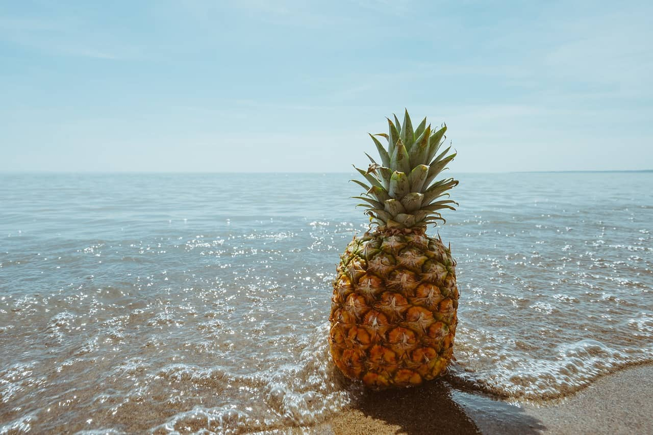 A pineapple on the beach at the edge of the sea