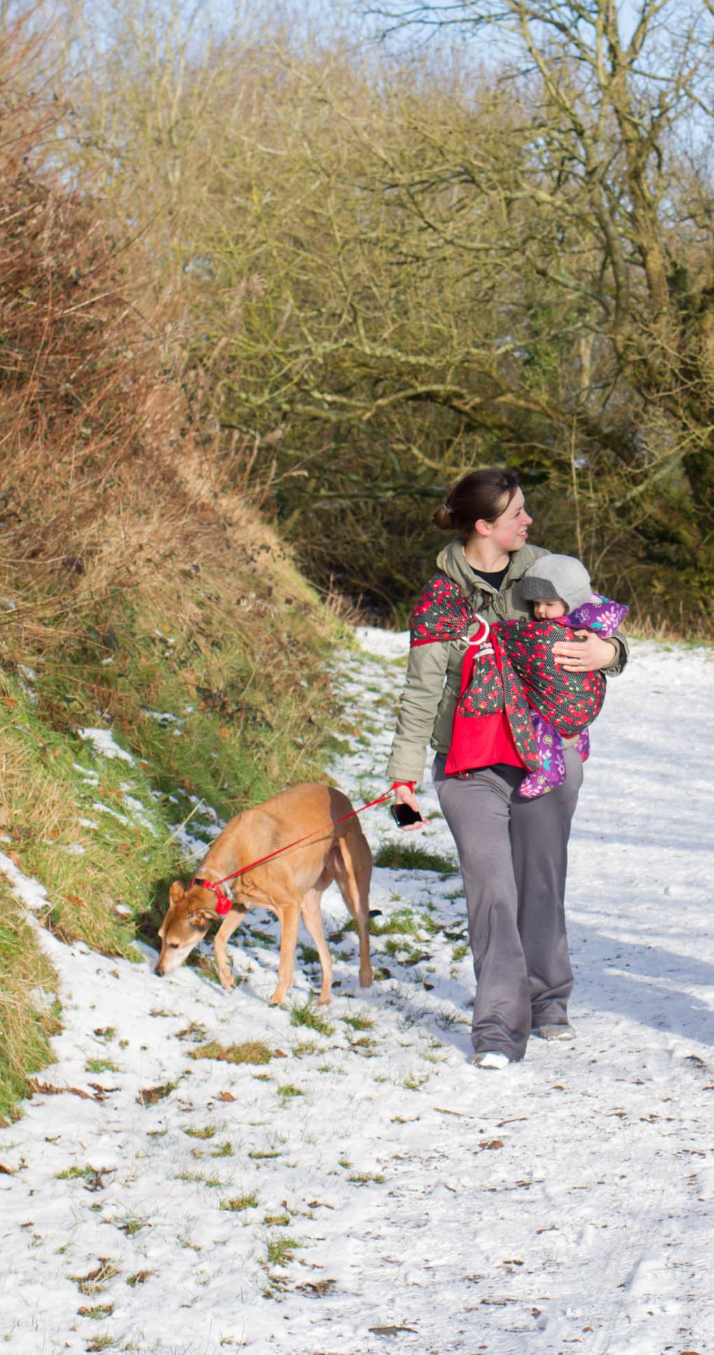 lady walking tan coloured lurcher on a lead, carrying a baby in a sling