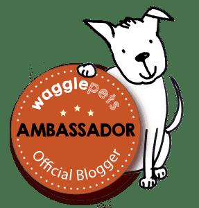 Bloggers_ambassador