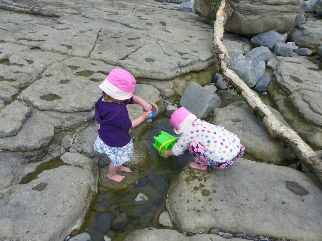Golden-Bucket-Sand-Art-Rock-Pooling-2