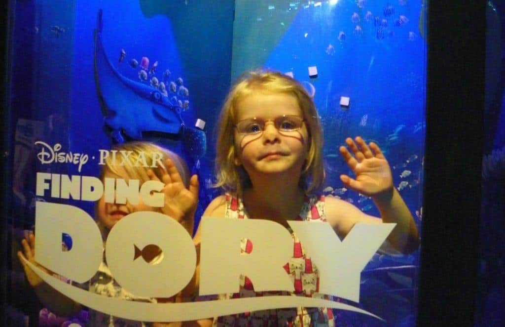 The day we found Dory