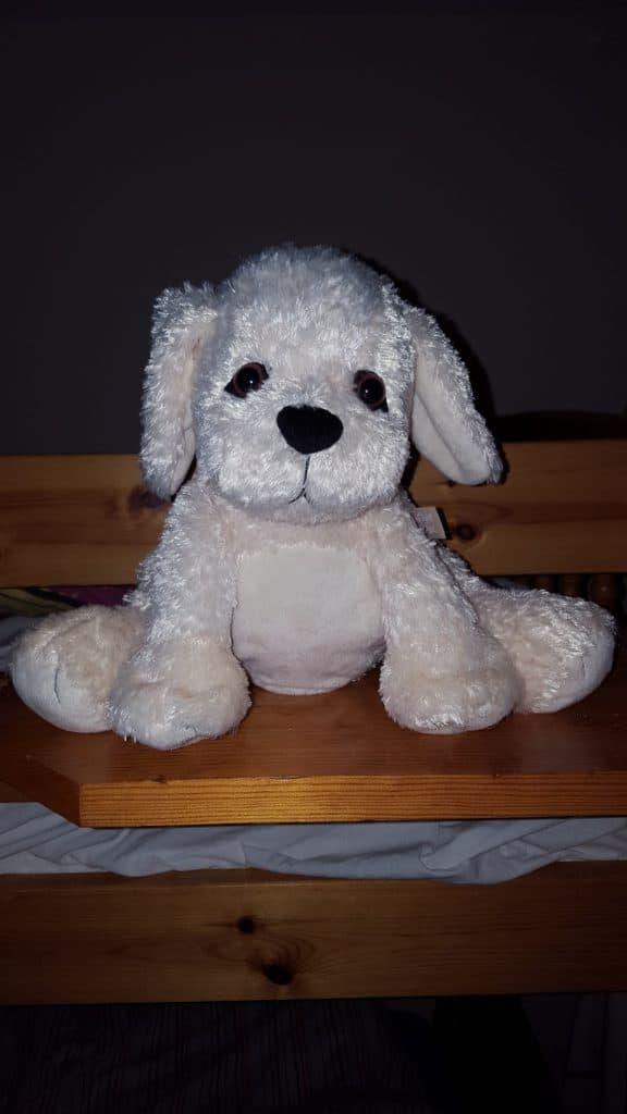 Golden Bear Sleep Tight All Night Puppy - Review