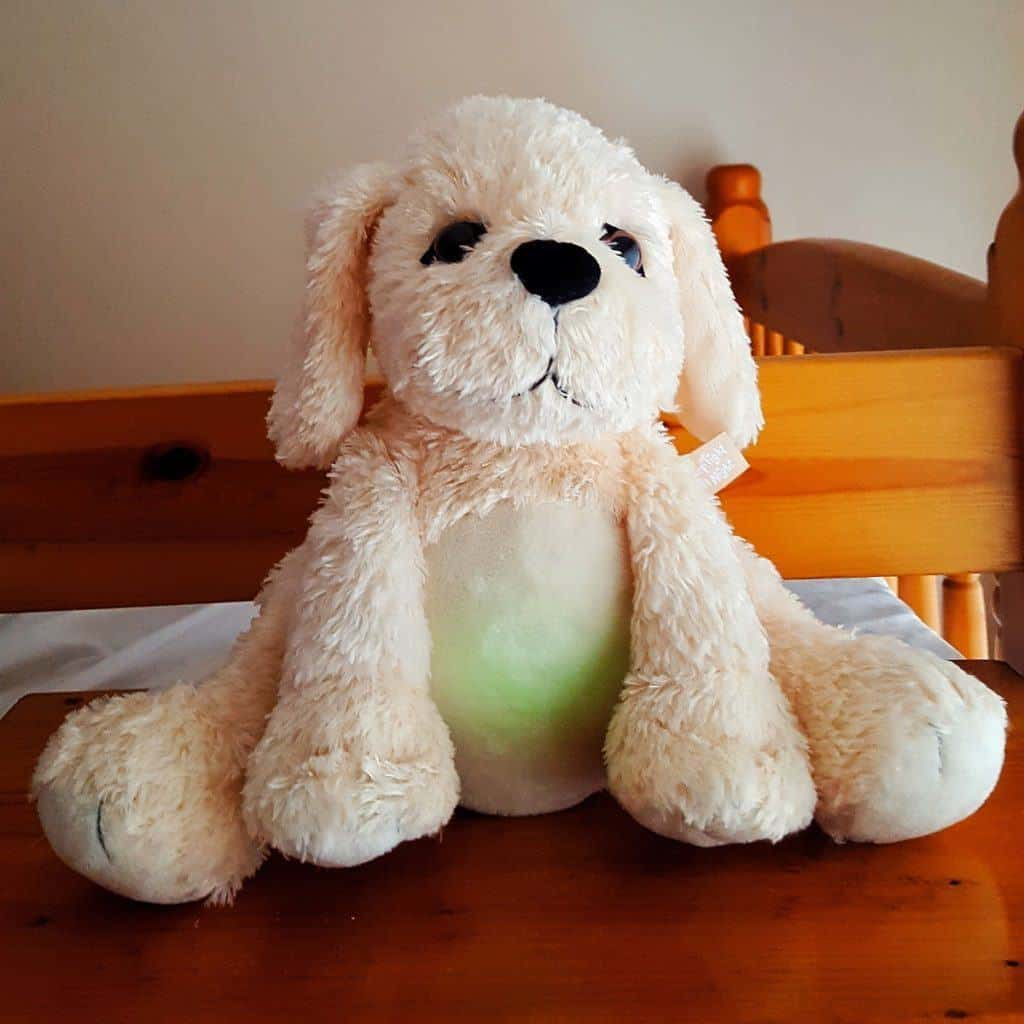 Golden Bear Sleep Tight All Night Puppy - Review