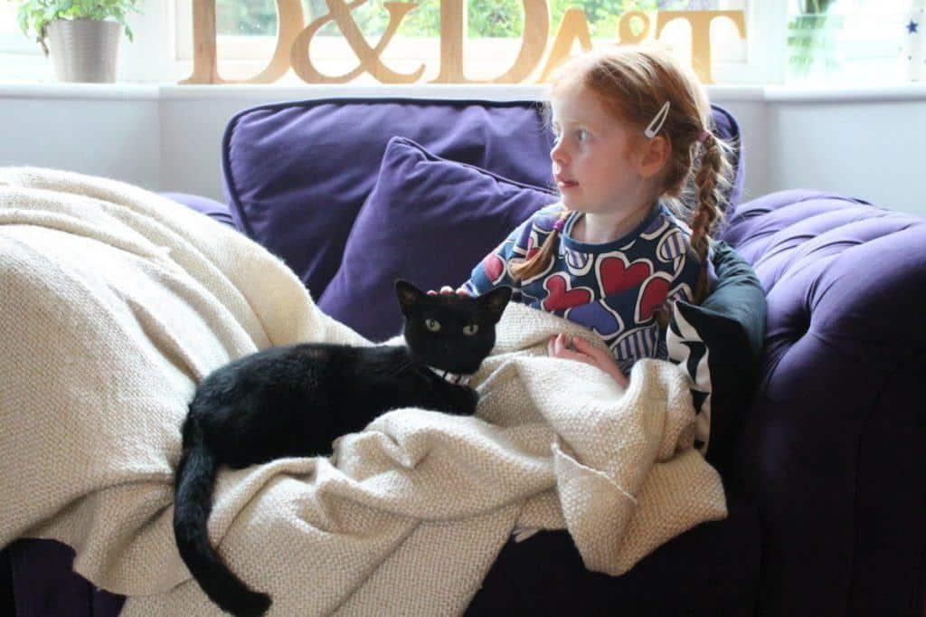 Interviews With Pets Chapter 2 - Leia's Story