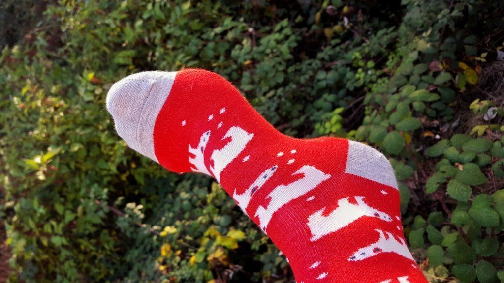 Christmas Sock Day 9th December 2016