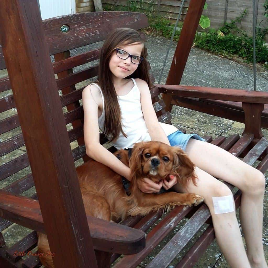 Interviews With Pets Chapter 6 - Max's Story