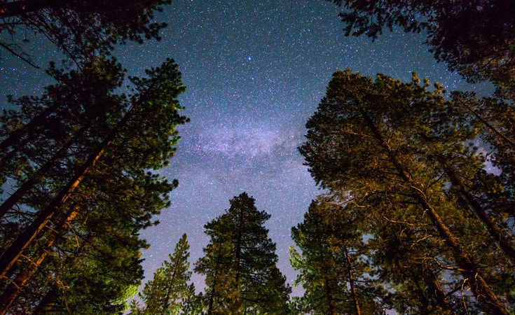 Stargazing is a great way to get back in touch with nature and get outdoors. It is the perfect way to teach children about space and stars in an educational way that will hold their interest and increase their knowledge of an important STEM subject. The Forestry Commission have produced some great resources to help parents to get out into the forest to do some stargazing with the kids after school.