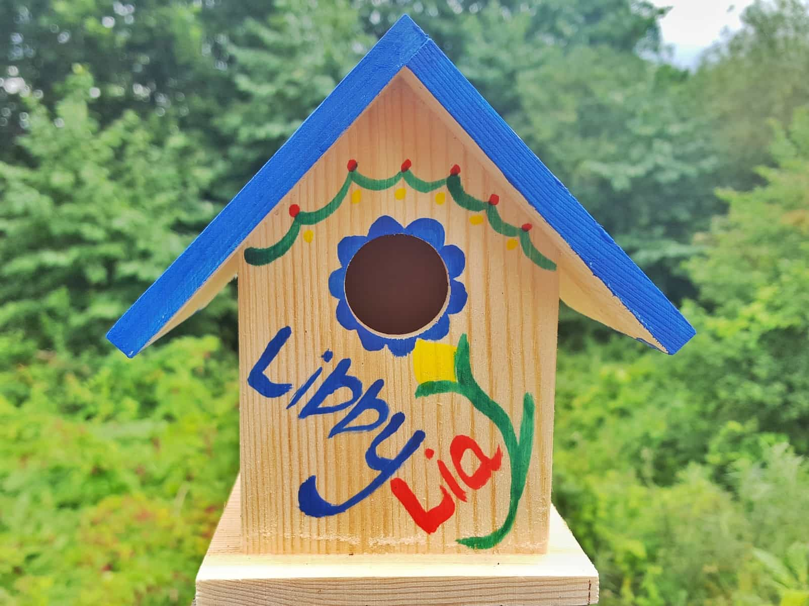 Feed the birds with a children's Big Bird Gift Box from Box Wild