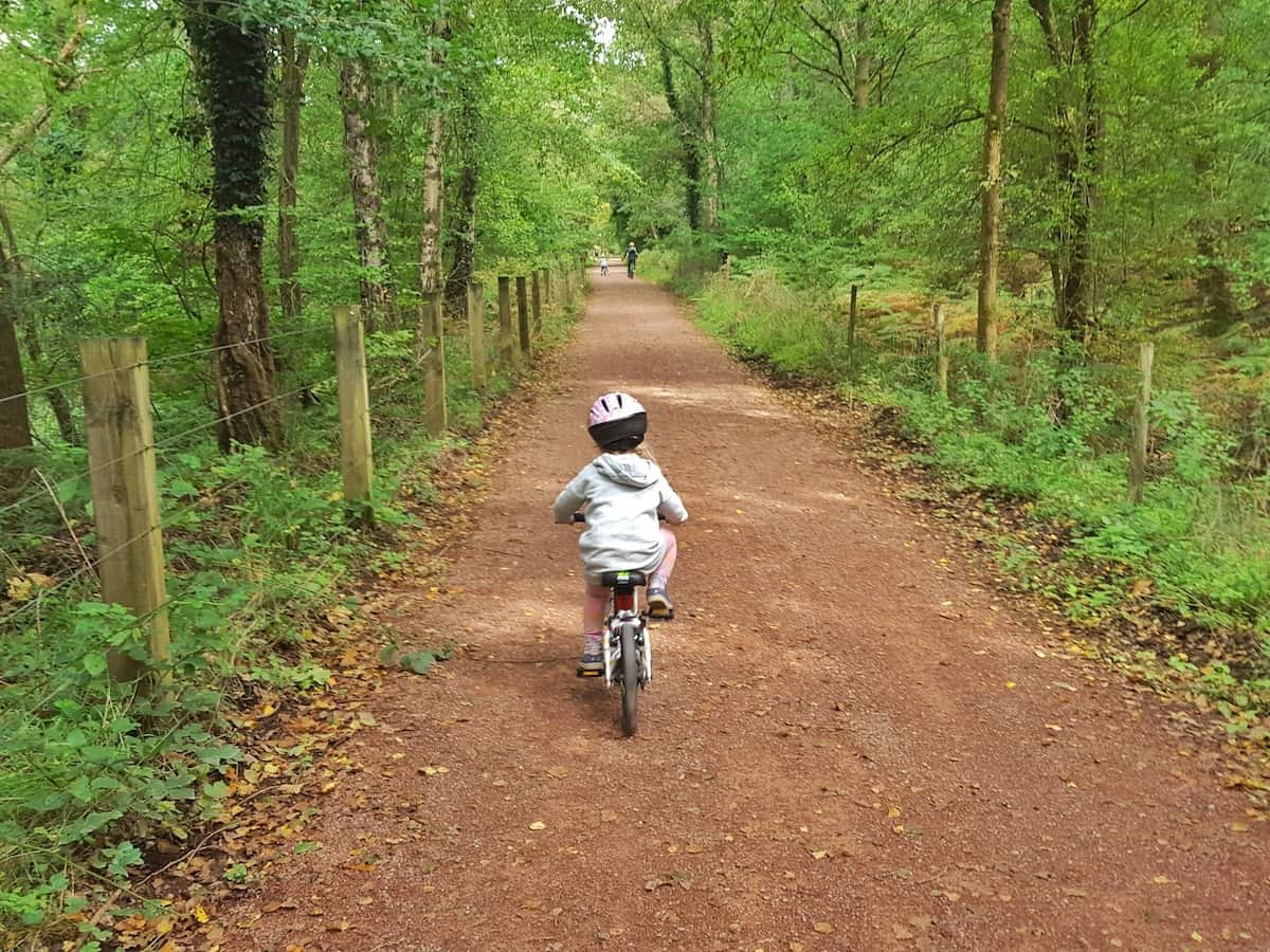12 things you need to know about cycling in the Forest of Dean