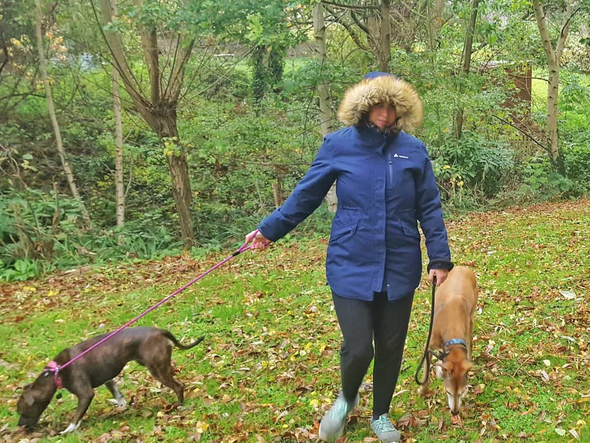 Winter dog walking and Millets winter coats for men and women