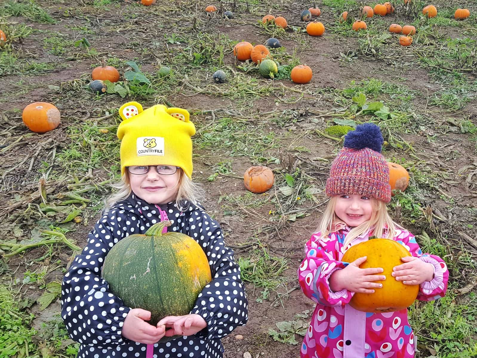National Forest Adventure Farm | Situated in Staffordshire in the West Midlands, UK - the National Forest Adventure Farm is the perfect day out for children and families who like to be outdoors. On Halloween, pick your own pumpkin from the pumpkin patch to take home with you. Plus, see all the other scary goings on. #Halloween #WestMIdlands #NationalForest #familytravel