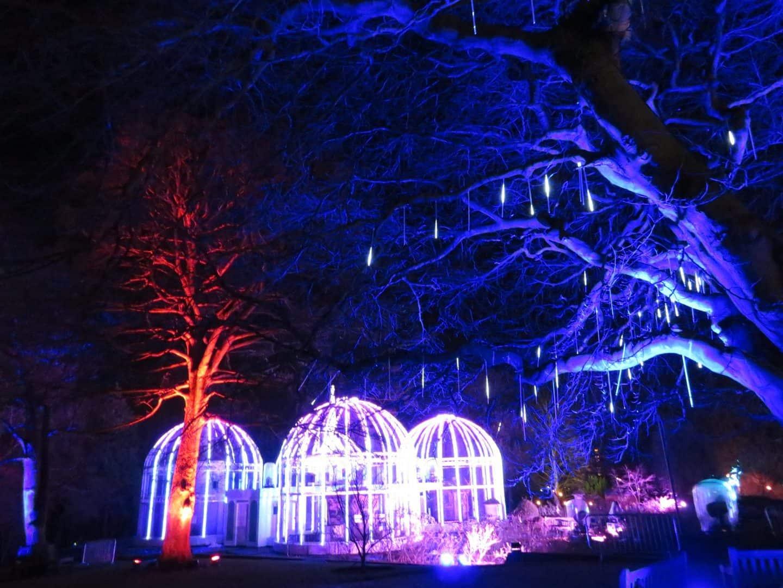 Christmas illuminations at Birmingham Botanical Gardens