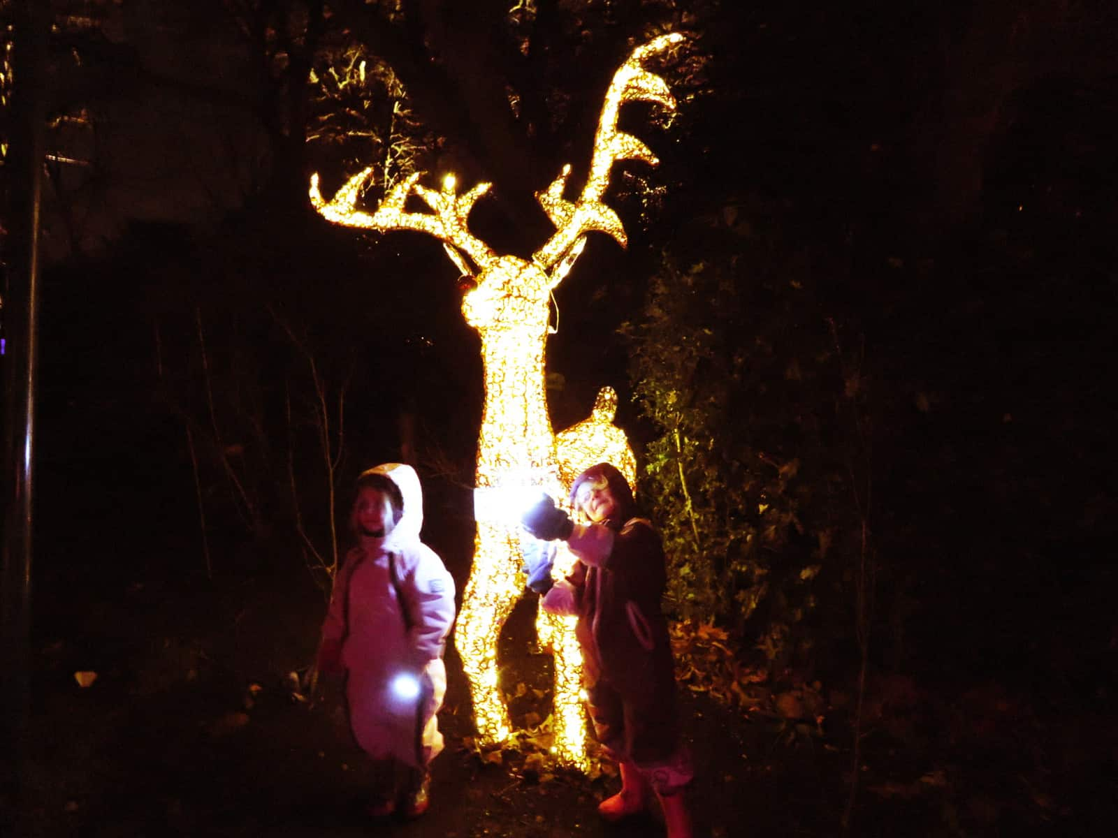 A gold, illuminated Rudolph the red nosed reindeer with two small children stood beside him in snow suits