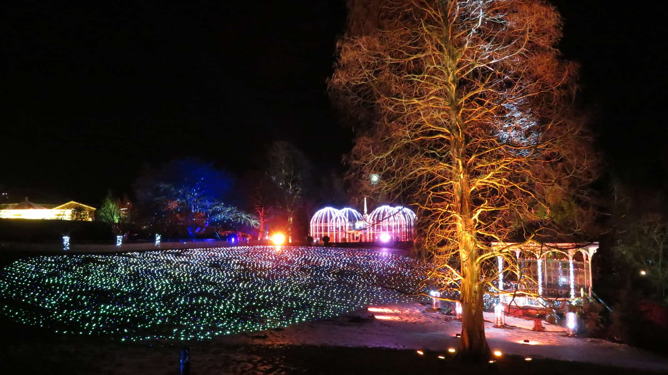 An illuminated lawn with tree and several structures also decked in lights