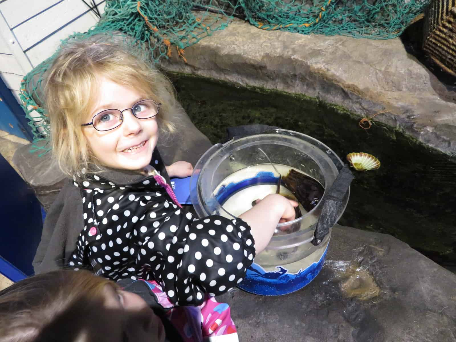 Little girl in black coat with white spots putting her hand into water to touch shark eggs