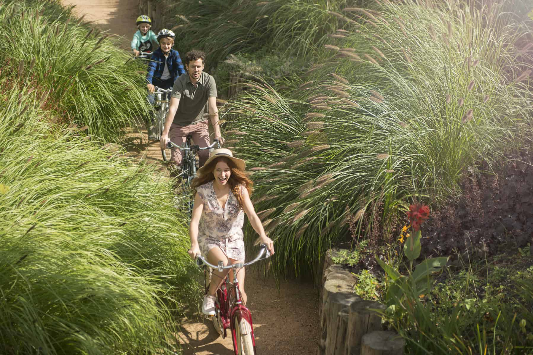 People cycling up a path surrounded by tall grasses