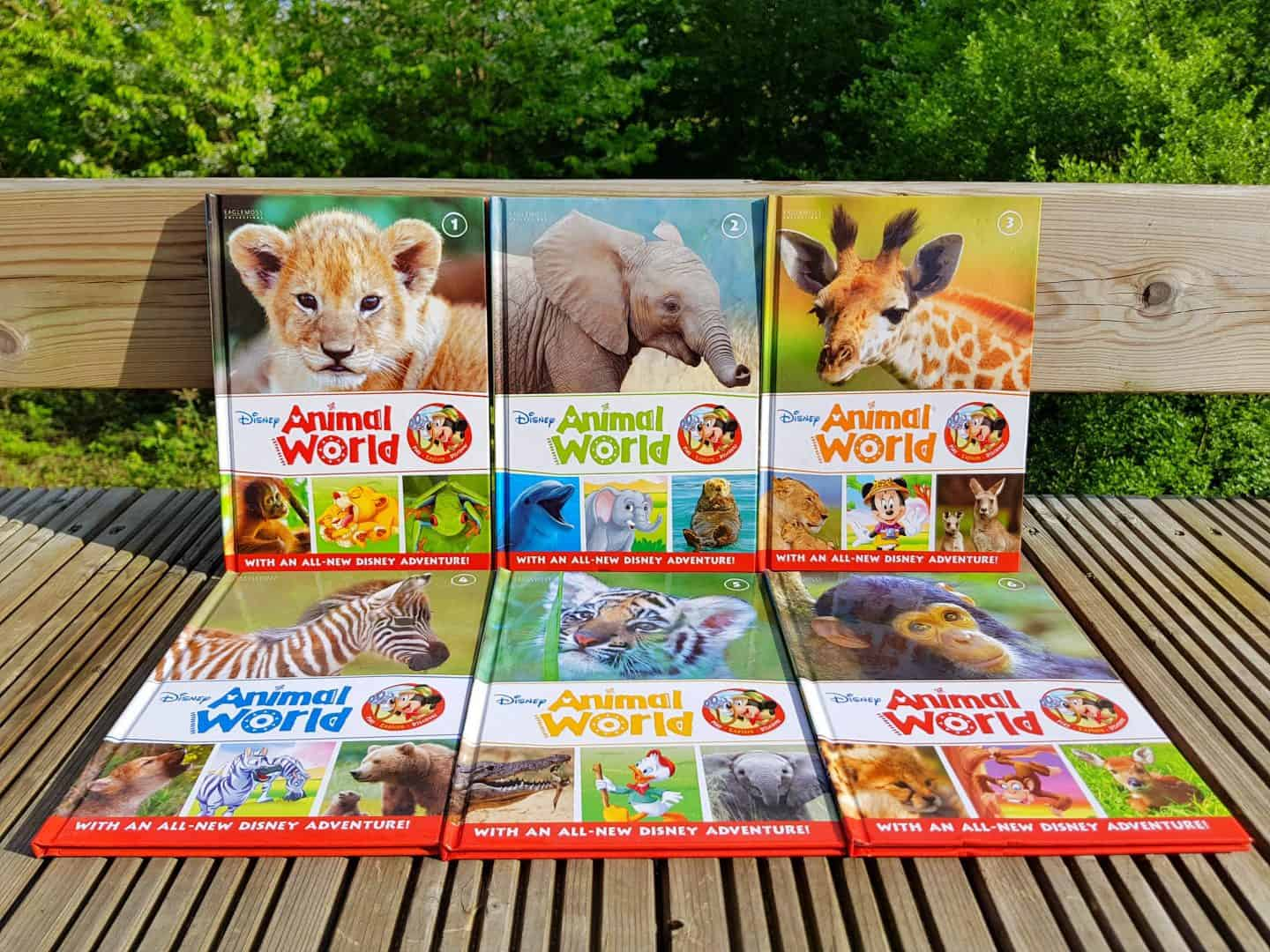 Disney Animal World books and playset