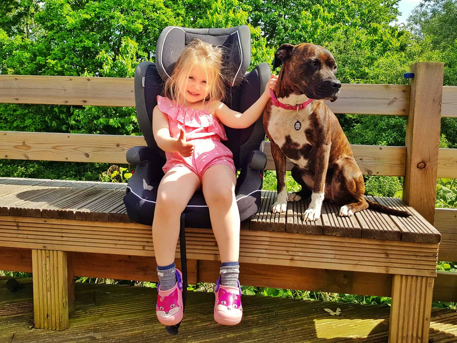 Little girl in pink outfit sat in car seat on a bench outside with dog beside her