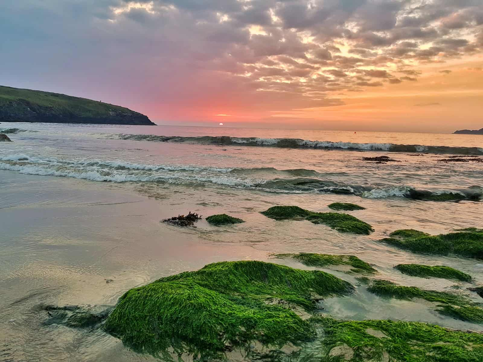 An open water swimming spot in Pembrokeshire - a beach at sunset with rocks covered in seaweed in foreground