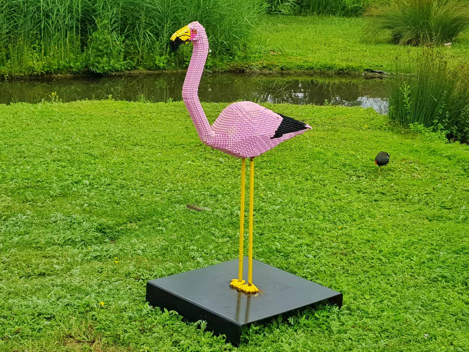 WWT Slimbridge, Gloucestershire - giant lego flamingo