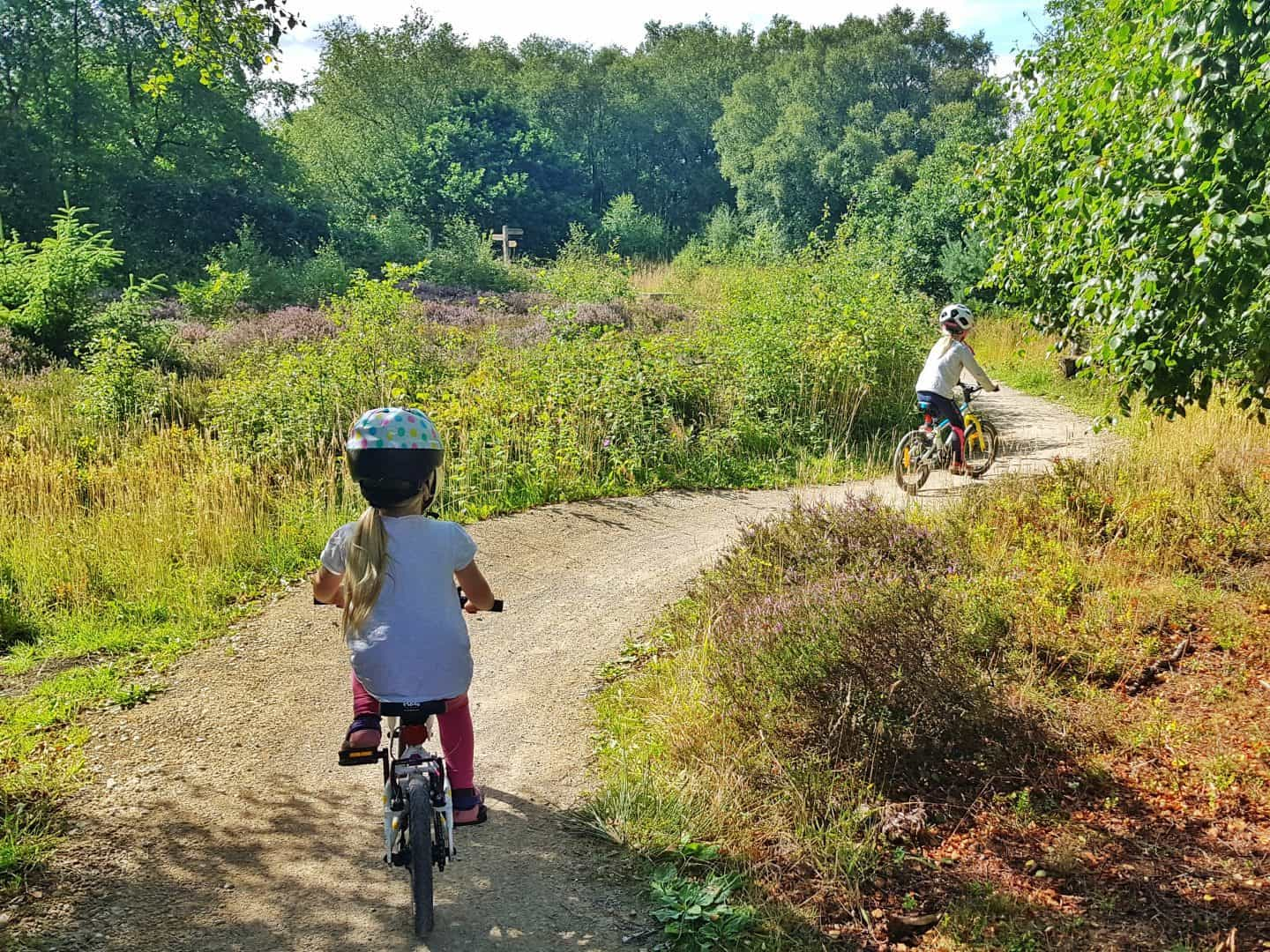 Two children on bicycles pedalling away from the camera on an off road trail