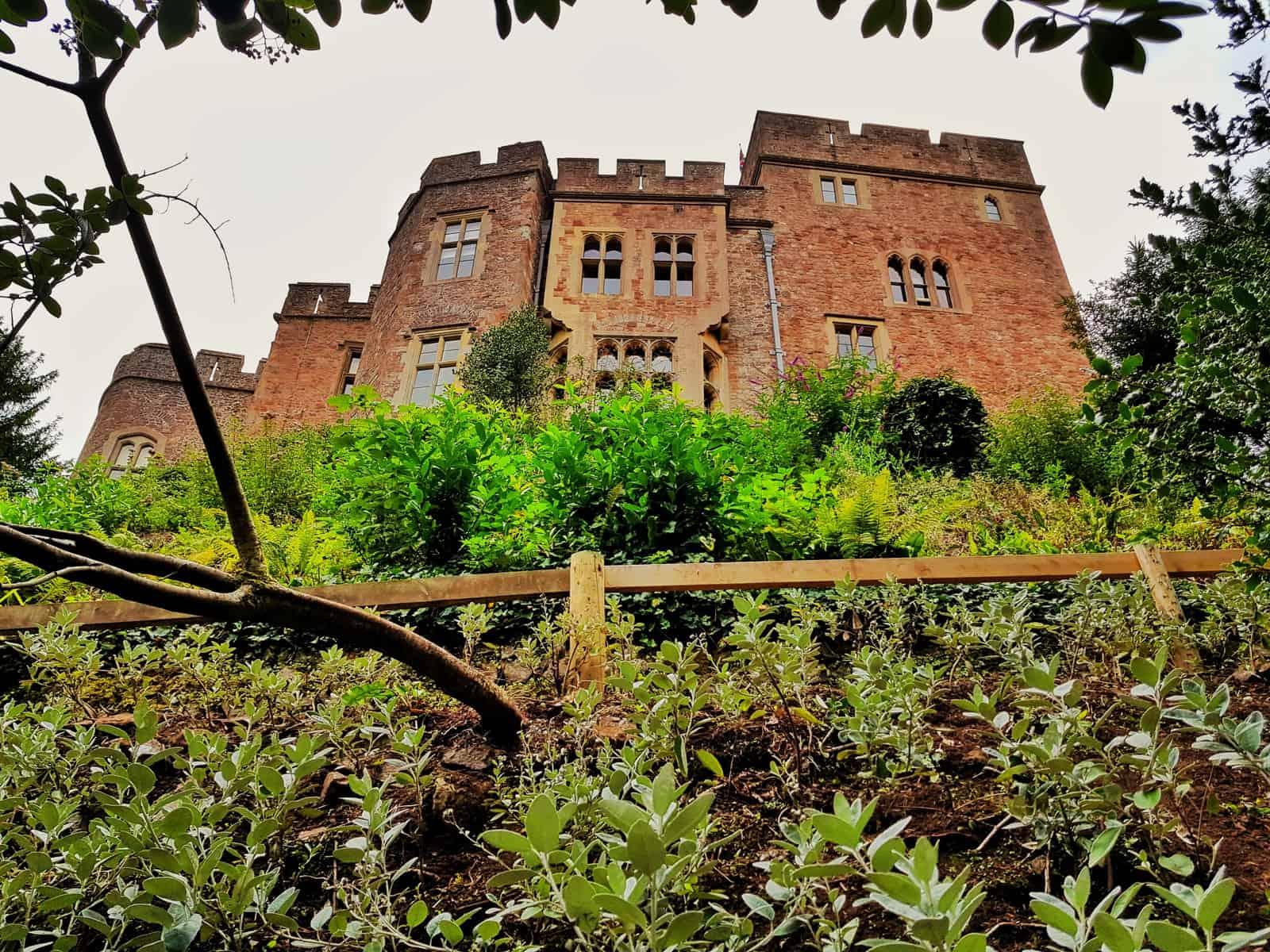 Hoburne Blue Anchor Dunster Castle