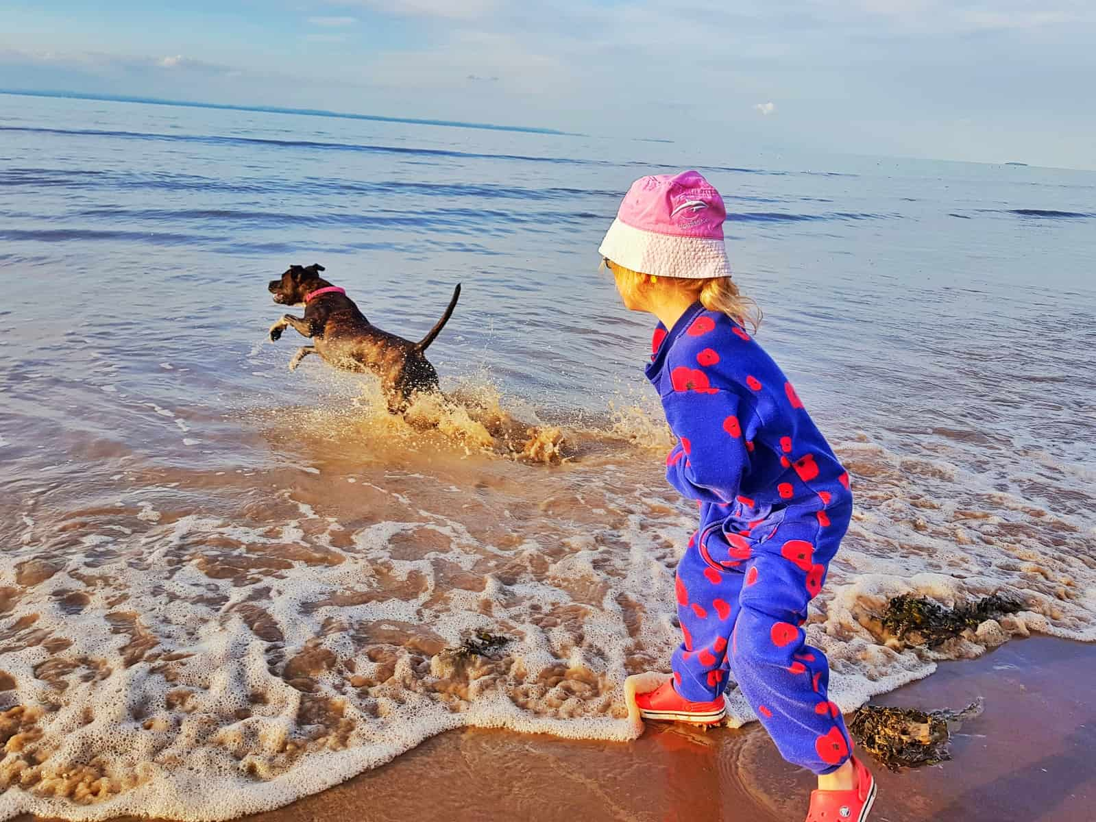 Hoburne Blue Anchor child playing with dog in sea