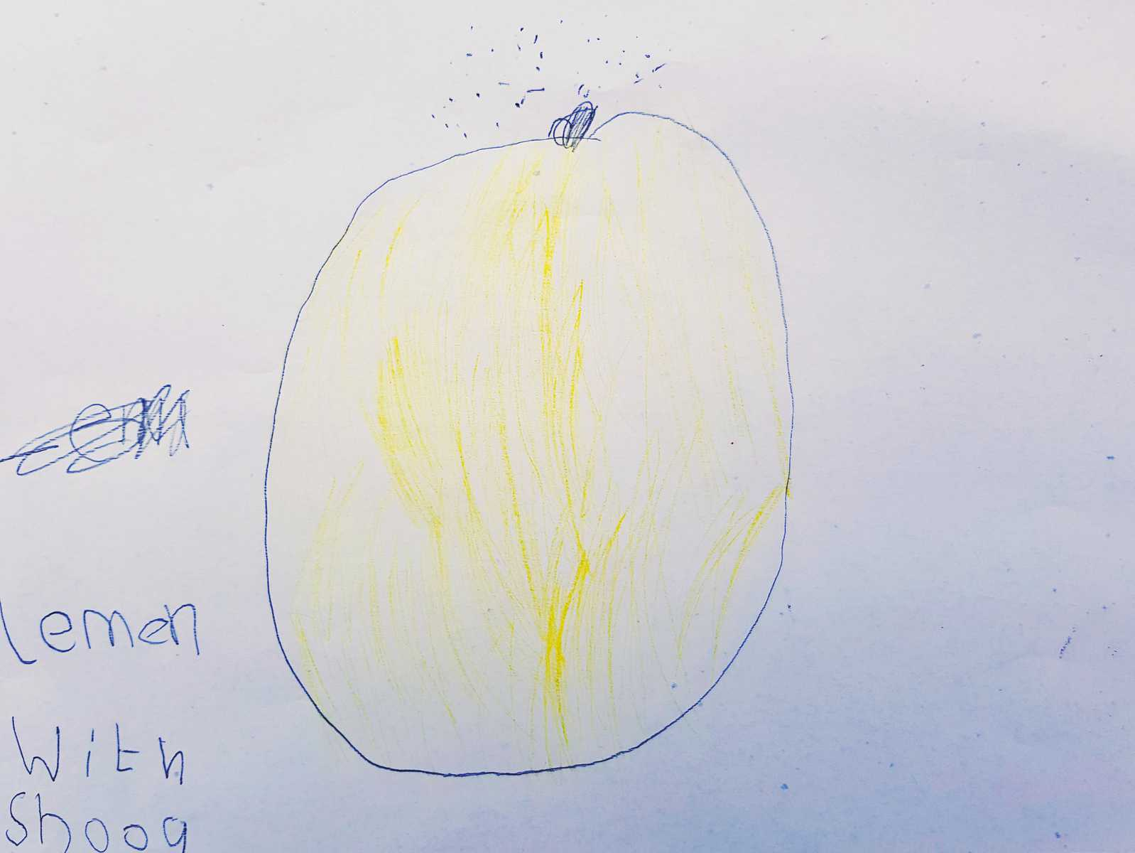 drawing of a lemon on white paper