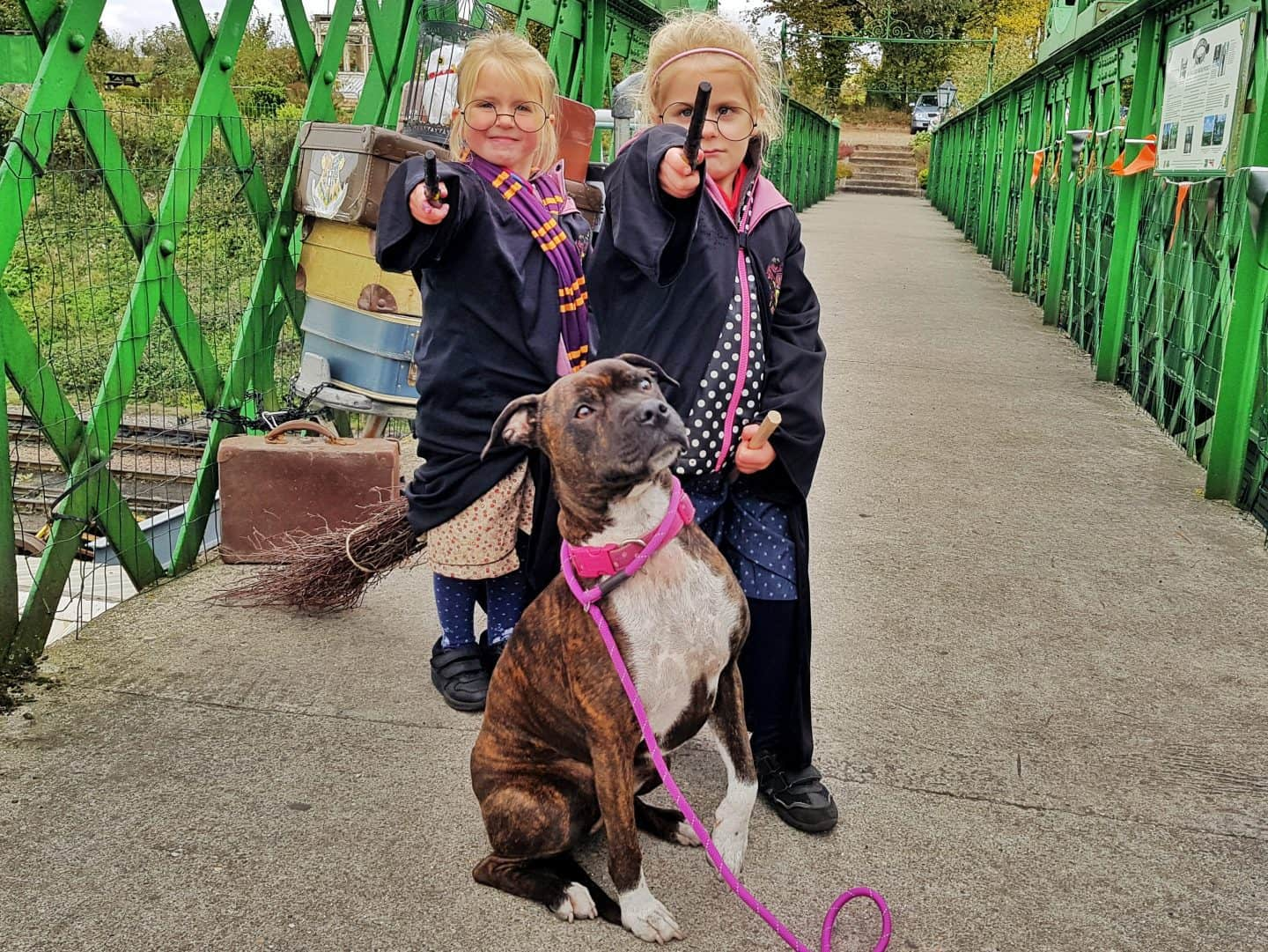 Watercress Line girls dressed as Harry Potter with dog