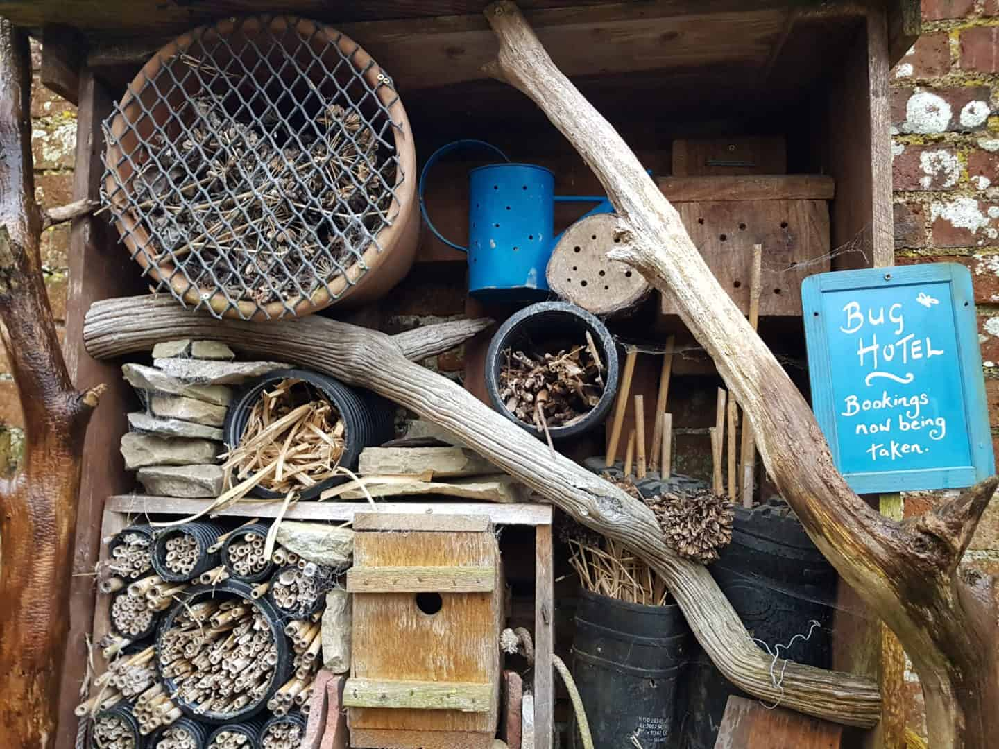 National Trust membership bug hotel