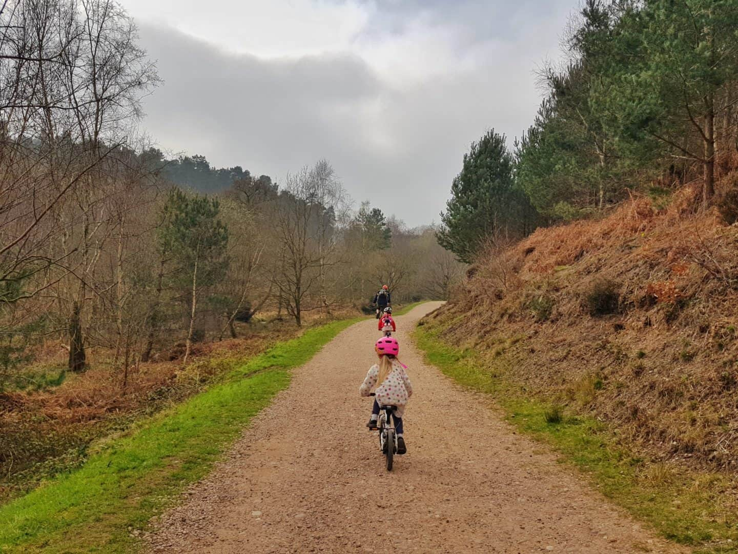 cyclists in Cannock Chase Forest Staffordshire West Midlands