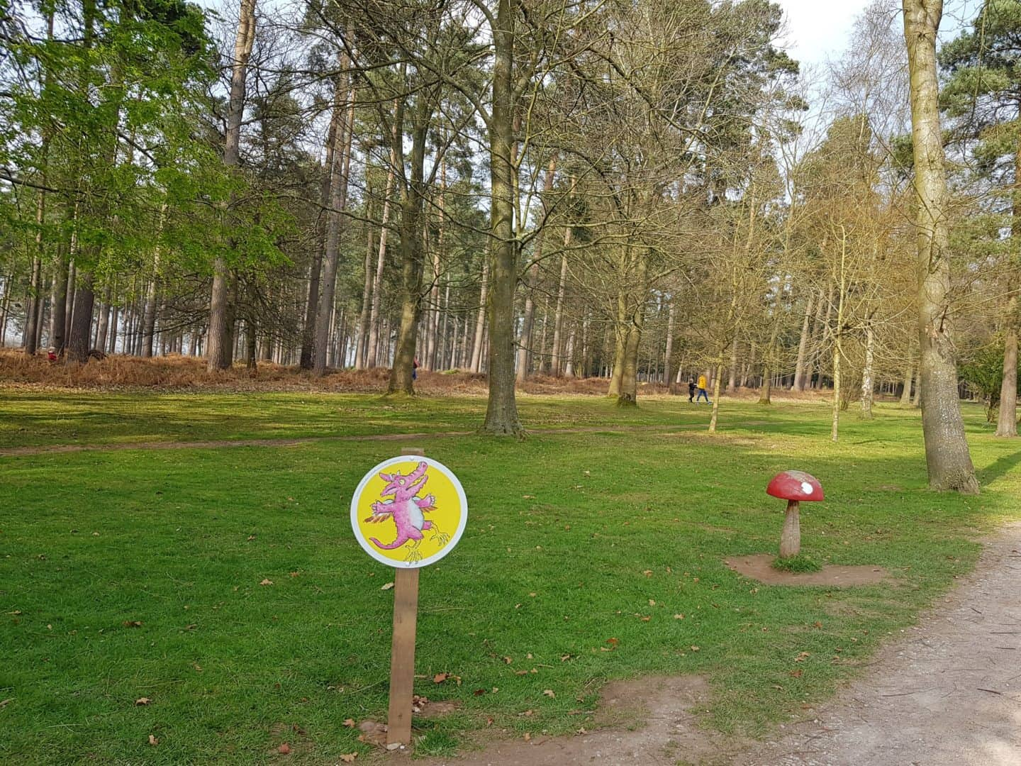 Zog activity trail in Cannock Chase Forest Staffordshire West Midlands