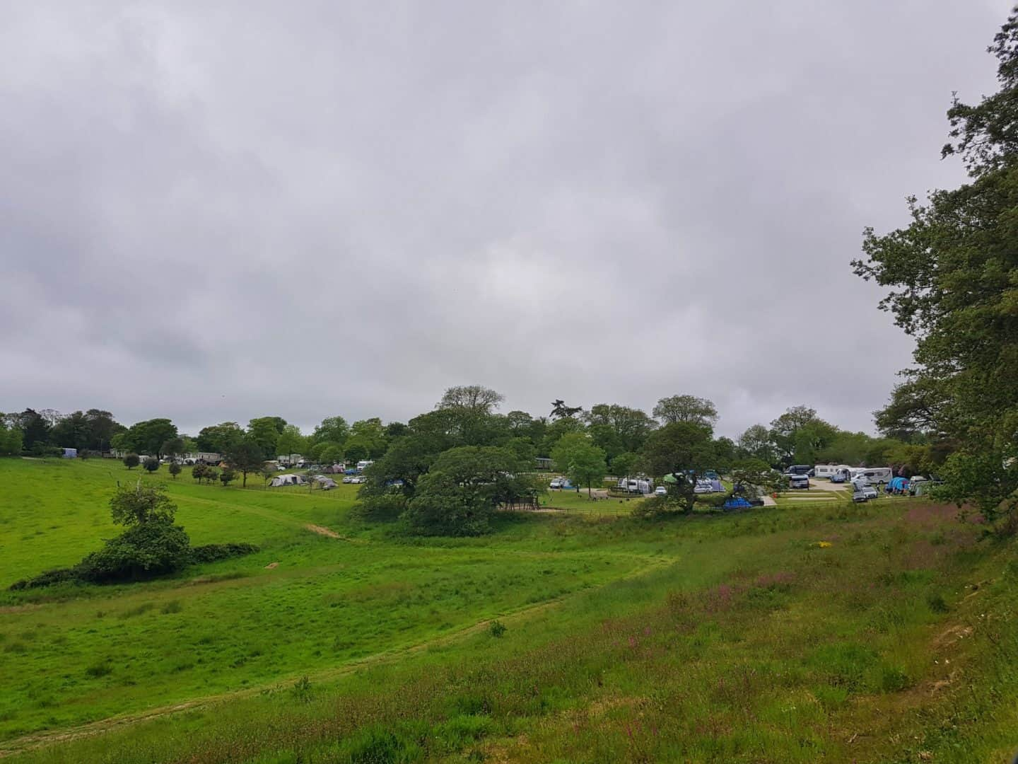 Heligan Campsite viewed from cycle path