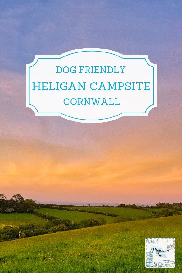 Dog friendly camping in Cornwall | If you're holidaying in the UK with your dog, campsites are often a great option. Heligan campsite offers holiday homes as well as pitches for tents, caravans, motorhomes and camper vans. The campsite itself and the surrounding area are both dog friendly. #camping #dogfriendly #uktravel #cornwall