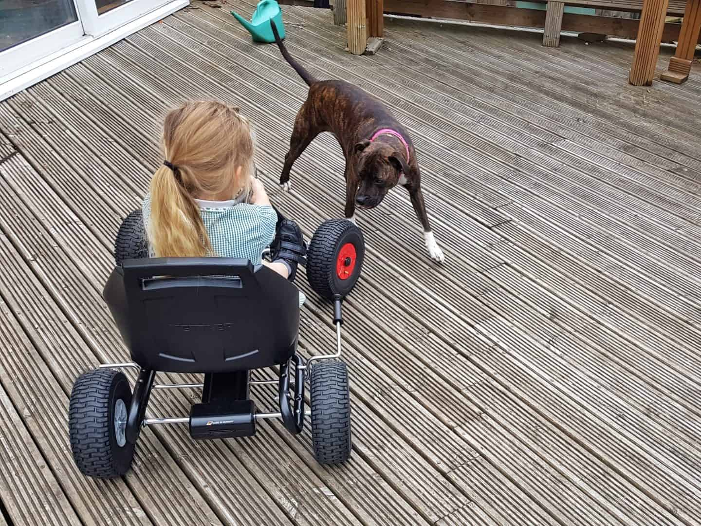 Girl riding Kettler Barcelona Air Go Kart back view with dog watching