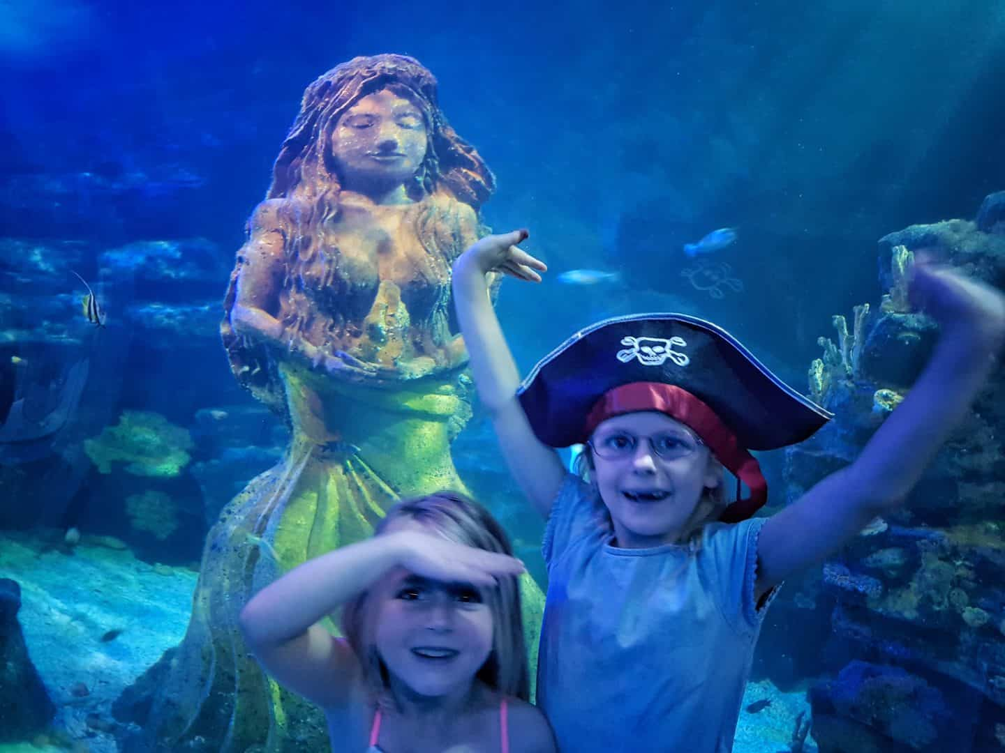 Children with a mermaid in the ocean tank at the National Sea Life Centre