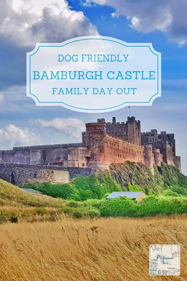 Bamburgh Castle Northumberland dog friendly family day out | One of the most impressive historical castles around, Bamburgh Castle is situated high on a clifftop, above the town. Being dog friendly, it's a brilliant day out for the whole family with interactive fun for children and fascinating facts to learn. #VisitNorthumberland #BamburghCastle #daysout #historylovers #UKTravel #familyfun