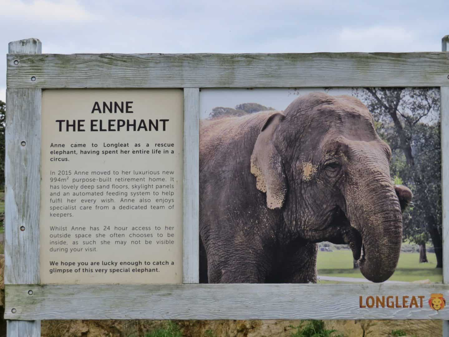 Sign with information about Anne the elephant at Longleat Safari Park