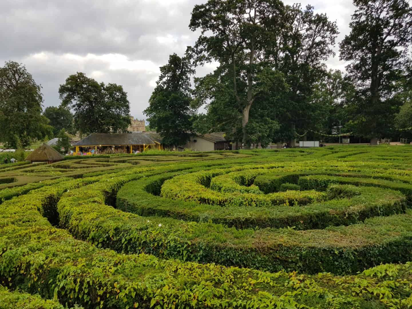 maze at Longleat Safari Park