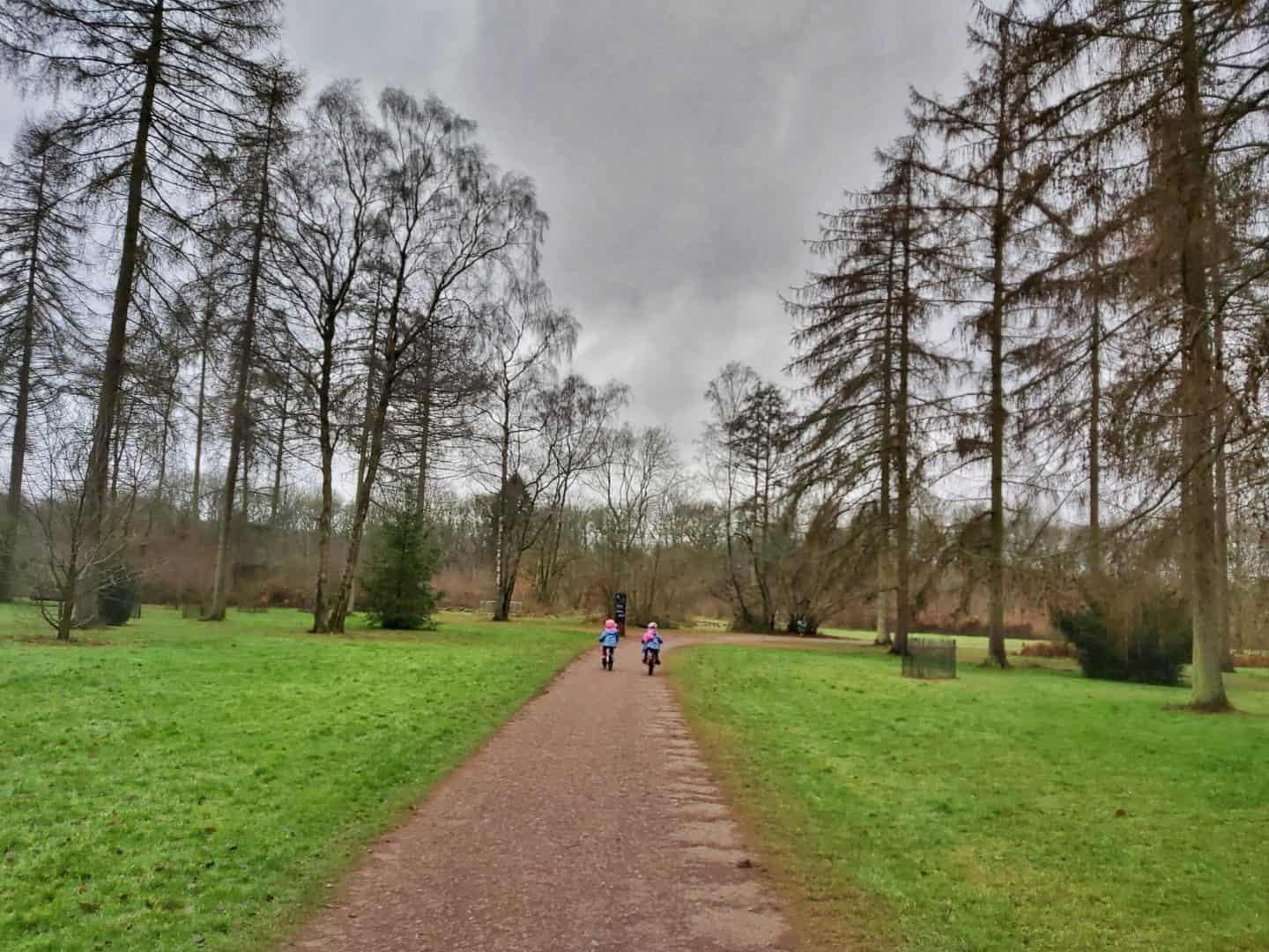 Two girls cycling on a flat path through a clearing in the trees at Westonbirt Arboretum