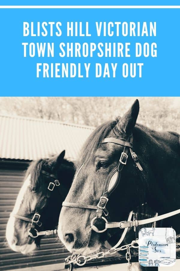 Blists Hill Victorian Town Shropshire | Review of a dog friendly family day out at Blists Hill Victorian Town in Shropshire. All you need to know about visiting with children and dogs.  #DaysOut #FamilyFun #UKTravel #WestMidlands #Shropshire