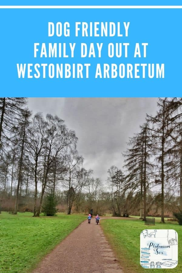 Westonbirt Arboretum | This Forestry England site in Gloucestershire is an ideal day out for families and it's dog friendly too. Find out how to get there, entry prices and what there is to keep children and adults entertained.  #ForestryEngland #familyfun #familydaysout #gloucestershire #getoutside