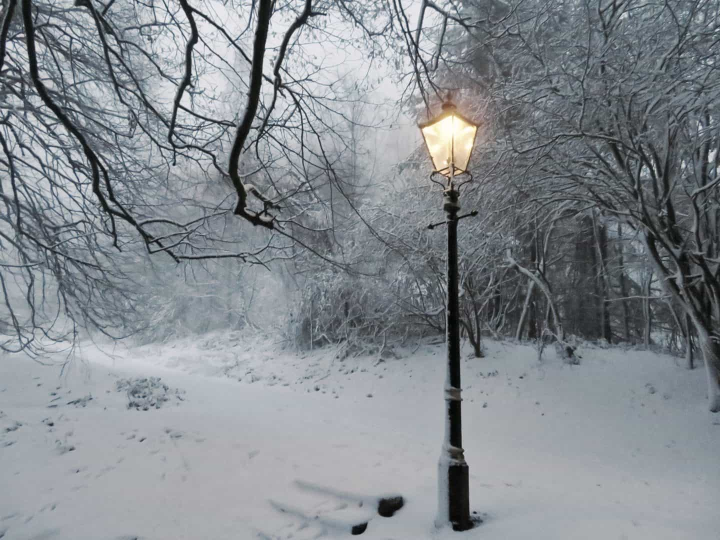 The pros and cons of living in Narnia [AD]
