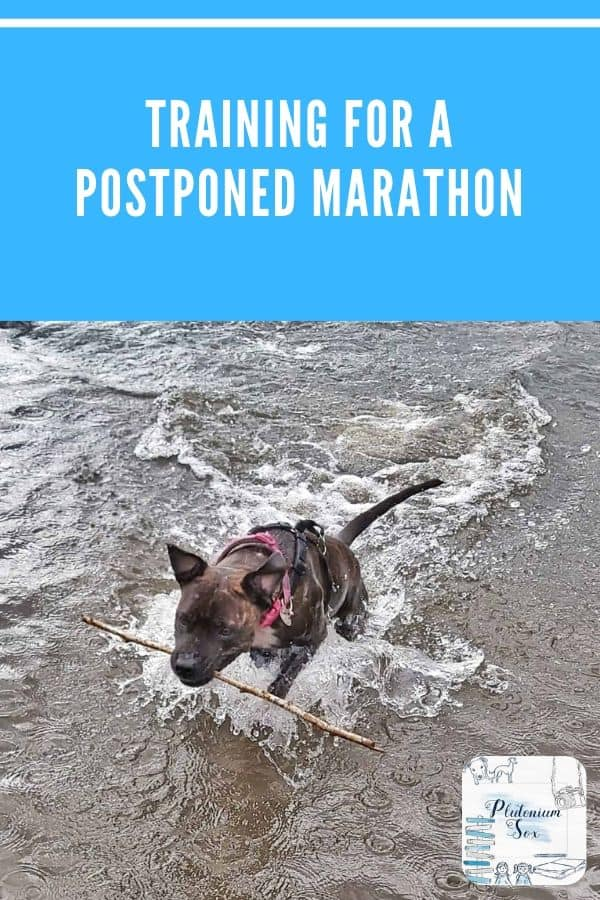 Training for a postponed marathon | How I'm going to be training for the postponed Brighton Marathon and links to expert advice on keeping safe and running during the coronavirus pandemic. #running #marathontraining #marathon #runninglife #runners #distancerunning